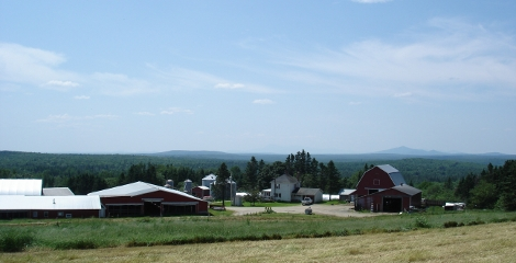 Lilley Farms in July 2009.